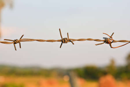 barbed wire fence on a background photo