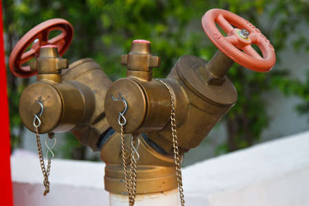 red valve and ank photo
