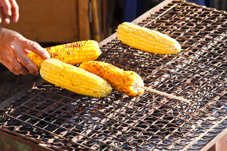 A Close-up fresh corn Stock Photo