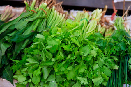 Green vegetables and dark leafy food background as a healthy eating concept Standard-Bild