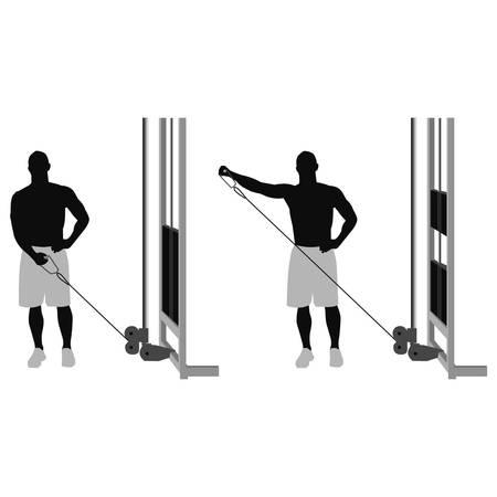 gym room: CABLES b�ceps para BAJA