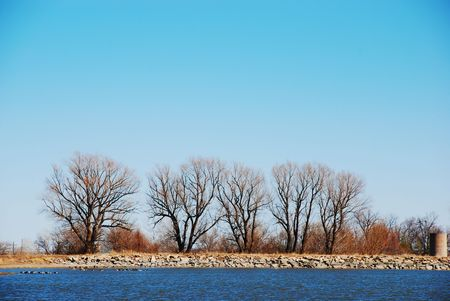 Bare trees in winter growing at the far side of a small blue lake photo