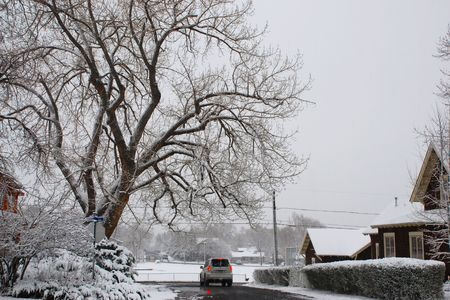 blanketed: During a snowstorm, a car proceeds along wet streets