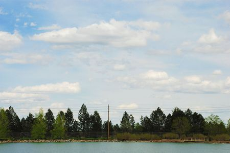 silty: Line of pine trees stand at the shore of a small rural lake Stock Photo