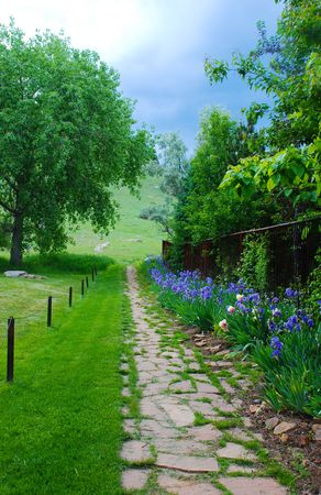 hillside: Blue Iris-lined rustic stone path leads to an open space hillside