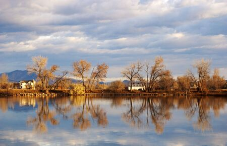 Cottonwood trees lean in different directions by a lake with reflections photo