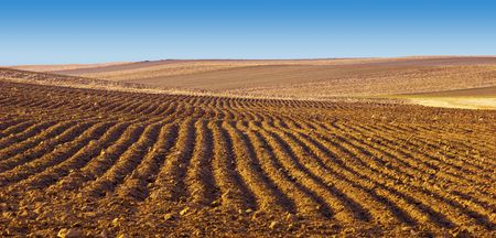 furrows: Plowed field and wide blue sky in Colorado in Winter Stock Photo