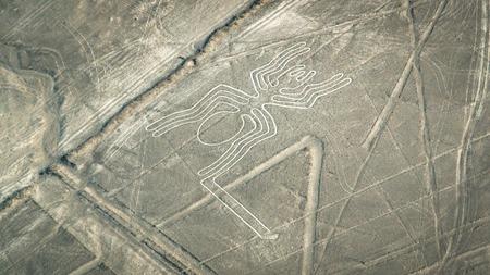 The Spider figure as seen in the Nasca Lines, Nazca, Peru Foto de archivo