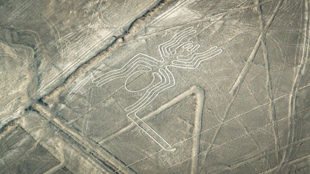 The Spider figure as seen in the Nasca Lines, Nazca, Peru 免版税图像