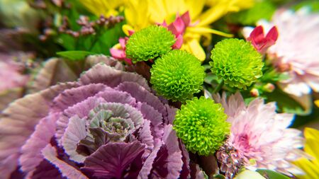 Flowers bouquet arrange for decoration in home or celebration