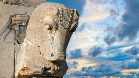 Persepolis, Iran - May 2019: Horse head in Ruins of Persepolis, the capital of the Achaemenid Empire later destroyed by Alexander the great. Historical city of Persepolis in Shiraz, Iran