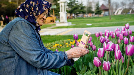 Senior Muslim woman taking a photo of flowers with her smartphone. Old woman using mobile photography concept.