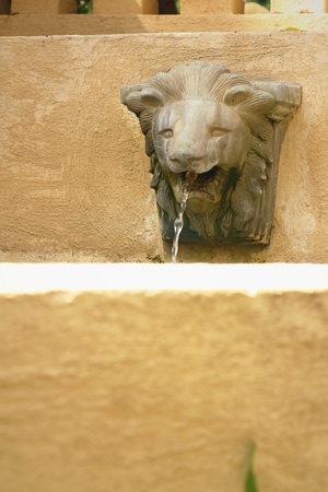 spitting: Lion statue spitting water at the park