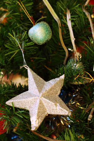 silver star: A silver star on the Christmas tree.