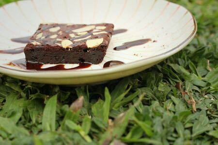 plato del bien comer: Chocolate Brownies cake on a white plate.