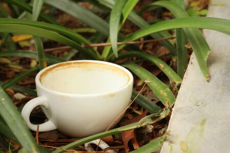 then: Coffee cup is then used on a green grass background. Stock Photo