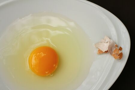studio b: Egg in a white bowl on a table.