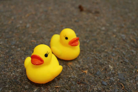 Yellow Rubber Duck On Background Of Cement. Stock Photo, Picture And ...