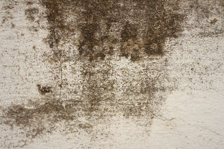 Background or texture of cement at the park. Stock Photo