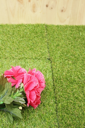 Pink flower on background of green grass. Stock Photo - 60611354