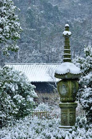 futian: Snow