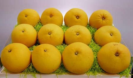 pomelo: Taiwans big pomelo