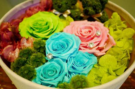 fiori secchi: Fiori secchi