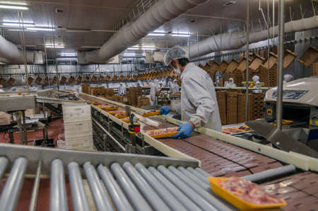 food drink industry: workers working in a chicken meat plant.