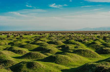 Wetlands in de provincie Kizilirmak delta Zwarte Zee Turkije Stockfoto