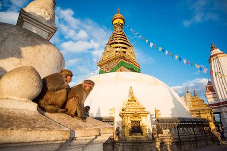 kathmandu: View of Swayambhunath Kathmandu, Nepal.