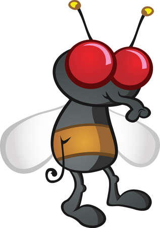 fly cartoon: House Fly Cartoon Character