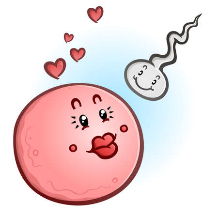 A cute pink egg cell and a spunky little sperm cell getting ready to conceive and create a pregnancy