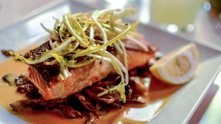a delicious slice of salmon, french gastronomy. Imagens
