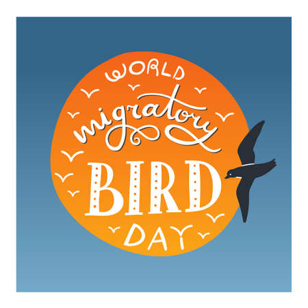 Lettering composition - World Migratory bird day. Hand drawn words with decoration in circle. Sun and sky on background and flying dird nearby. May.