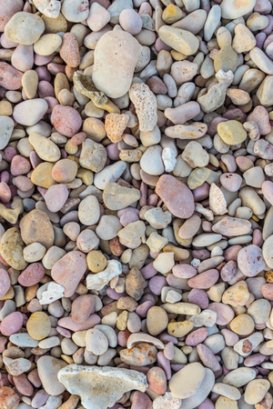 pebbles: Pebblestone and coral background
