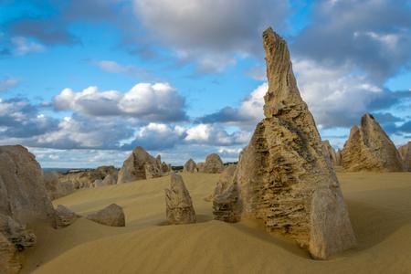 Stone pinnacles in Numbung National park, Western Australia Standard-Bild