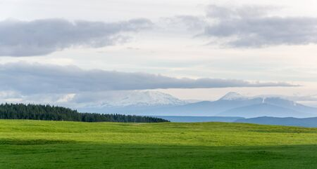 Green meadow with volcanic mountains in background, Tongariro, New ZEaland