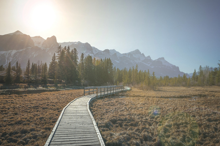 Policemans creek walkway and Rundle mountain during the late afternoon, Canmore, Canada Stok Fotoğraf
