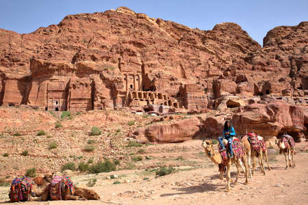 nabatean: PETRA, JORDAN - MARCH 9, 2016: A bedouin riding his camels with the Royal Tombs in the background Editorial