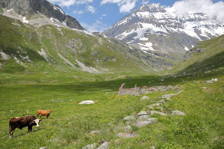 VANOISE, FRANCE: landscape from Entre-Deux-Eaux refuge with Grande Casse summit in the background, Northern Alps