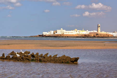 oman: SUR, OMAN: View of Ayjah from the main beach of Sur with white Herons in the foreground