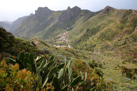 IMADA, LA GOMERA, SPAIN: Mountainous and green landscape with Imada village in the background and cactuses in the foreground Stok Fotoğraf