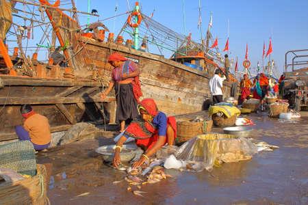 DIU, INDIA - JANUARY 8, 2014: Women preparing fish for sale at Vanakbara Fishing port in Diu Island Editorial