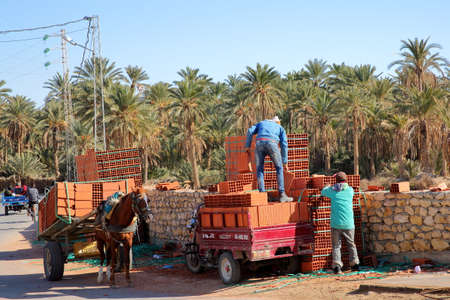 TOZEUR, TUNISIA - DECEMBER 20, 2019: Workers loading bricks on a carriage, with the palm grove in the background Standard-Bild - 141072882