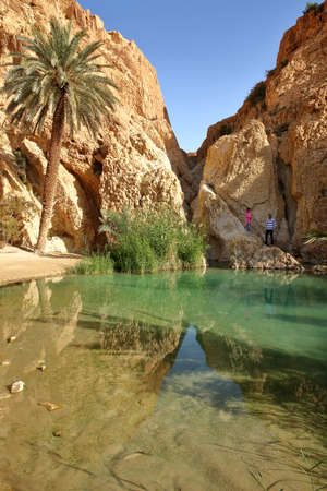 CHEBIKA, TUNISIA - DECEMBER 16, 2019: The oasis of Chebika near Nefta, with a palm tree and mineral rocks reflecting in clear water