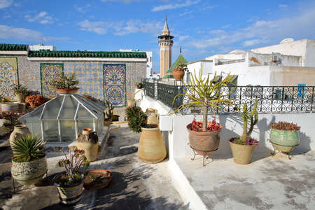 TUNIS, TUNISIA - JANUARY 01, 2020: Colorful tiled terrace overlooking the medina, with a view on the minaret of Hammouda Pacha Mosque and plants in the foreground