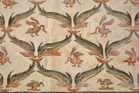 EL JEM, TUNISIA - DECEMBER 24, 2019: details of a mosaic representing dolphins inside the archeological museum