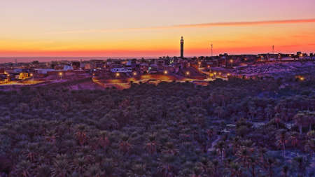 The city of Nefta at sunset, Tunisia, with a palm grove in the foreground Standard-Bild - 141775003