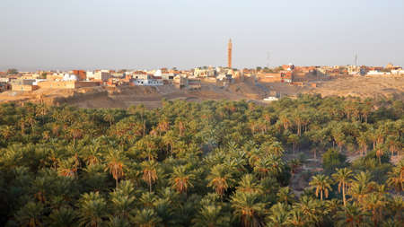 General view of the city of Nefta, Tunisia, with a palm grove in the foreground Standard-Bild - 141775004