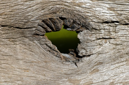hole in wooden texture as background Banco de Imagens
